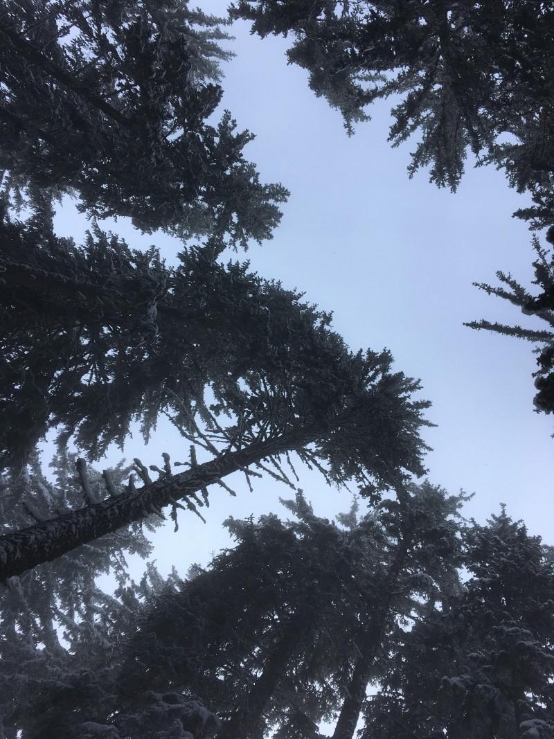 Col de la Louze snowboard 4