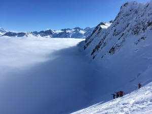 Bel oiseau ski randonnée aiguilles Rouges Mont Blanc