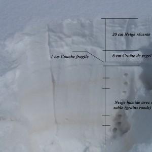 coupe globale manteau neigeux