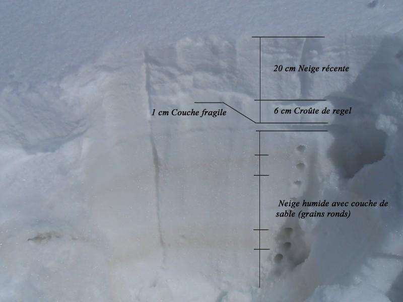 Shéma coupe globale manteaux neigeux Mirantin 2100m SO